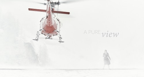 Next: A Pure View